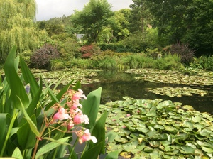 de tuin van monet in Giverny
