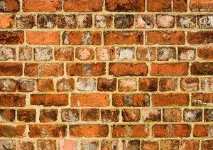 cement muren huis