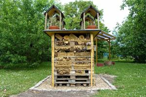 gratis stock foto 39 s rgbstock gratis afbeeldingen deluxe insect hotel ayla87 may 21. Black Bedroom Furniture Sets. Home Design Ideas